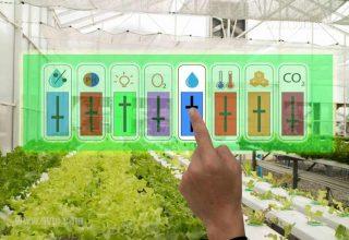 دوره آموزش طراحی و ساخت گلخانه هوشمند